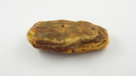 bryłka bursztyn bałtycki żółty nieprasowany duży 37,9 g