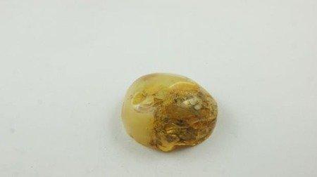 bursztyn bałtycki kaboszon polerowany otwory 18,8 g