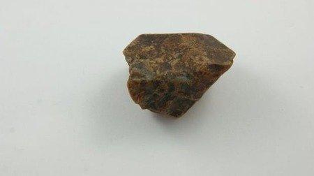 bursztyn bałtycki koniakowy kora niepolerowany 24,5 g