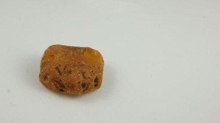 bursztyn bałtycki naturalny niemodyfikowany surowy
