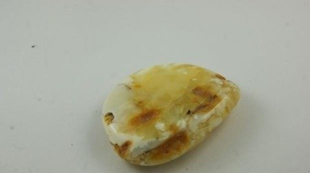 bursztyn bałtycki płaski kaboszon królewski natura 37,6 g