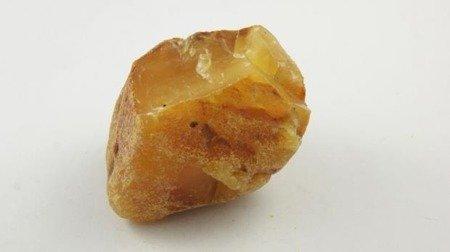 bursztyn bałtycki unikat biały królewski duży 59,3 g